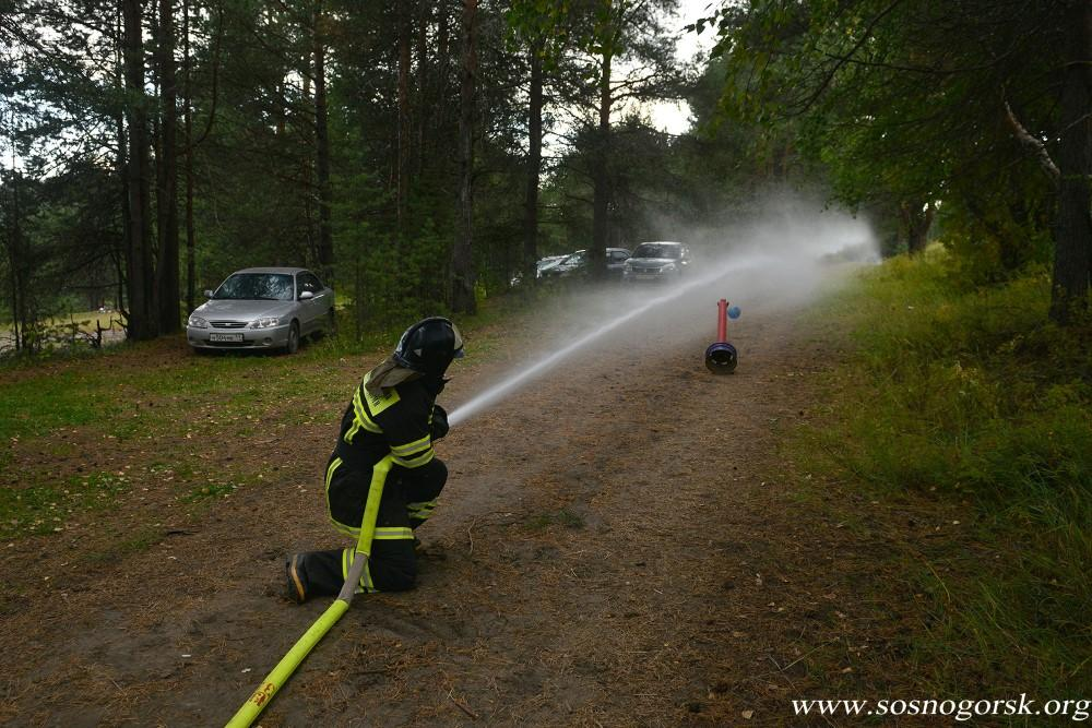 Сосногорье-2015 Пожарный