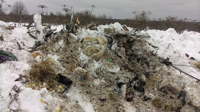 Свалка в деревне Захарово Сыктывдинского района