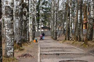 Мичуринский парк Сыктывкара обзаведется арт-объектами и дополнительным озеленением